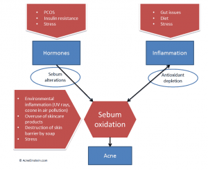 factors_influencing_adult_acne
